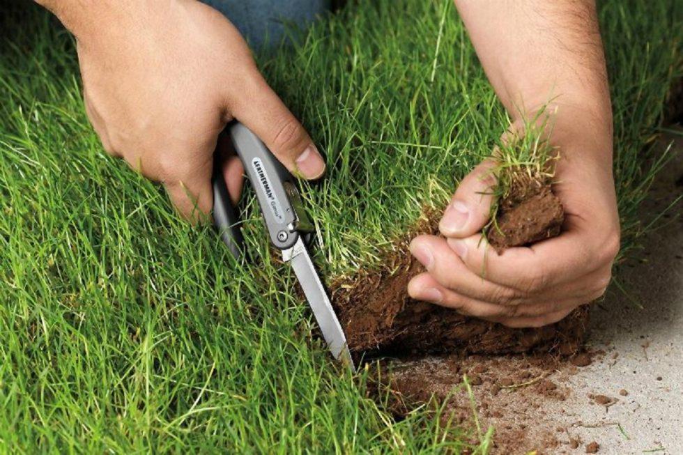 Самозахват земли: ответственность, как узаконить в 2019 году