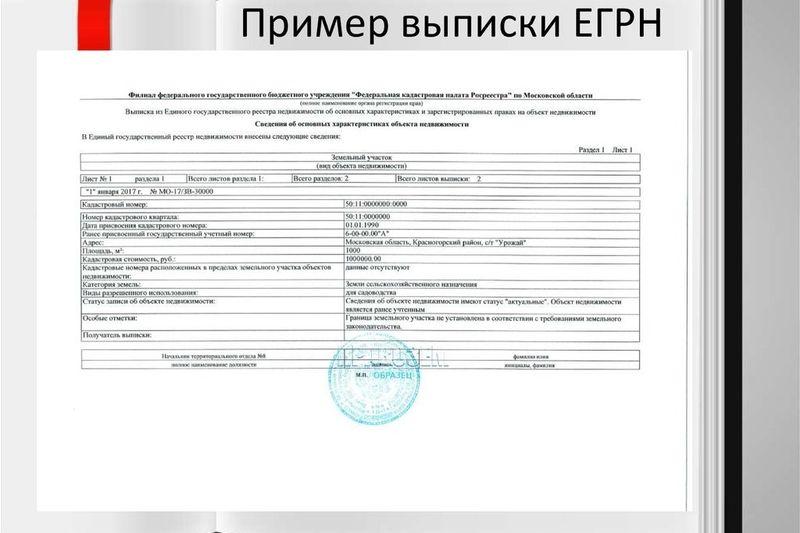 Пример выписки ЕГРН