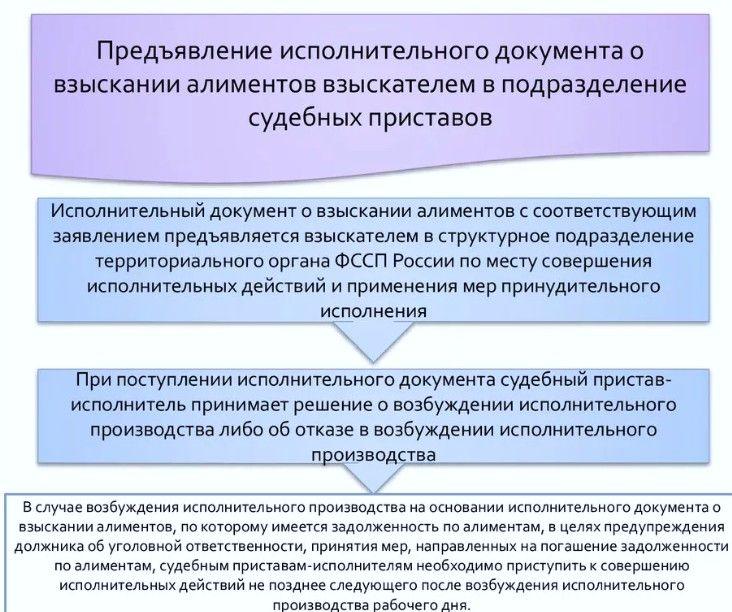 Пример обращения в ФССП (блок-схема)